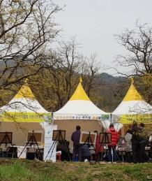 제19회 산수유꽃축제 홍보부스 운영